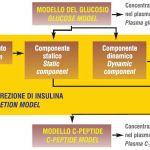 Funzionalità beta cellulare ed insulino-sensitività nel diabete gestazionale